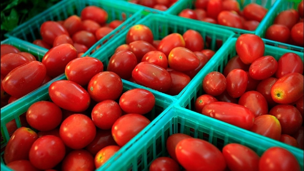 Mexican tomatoes, strawberries worry Fla  growers | KOMO