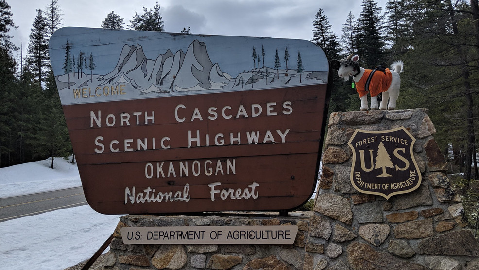 Sign greets travelers to the North Cascades Highway (WSDOT image)