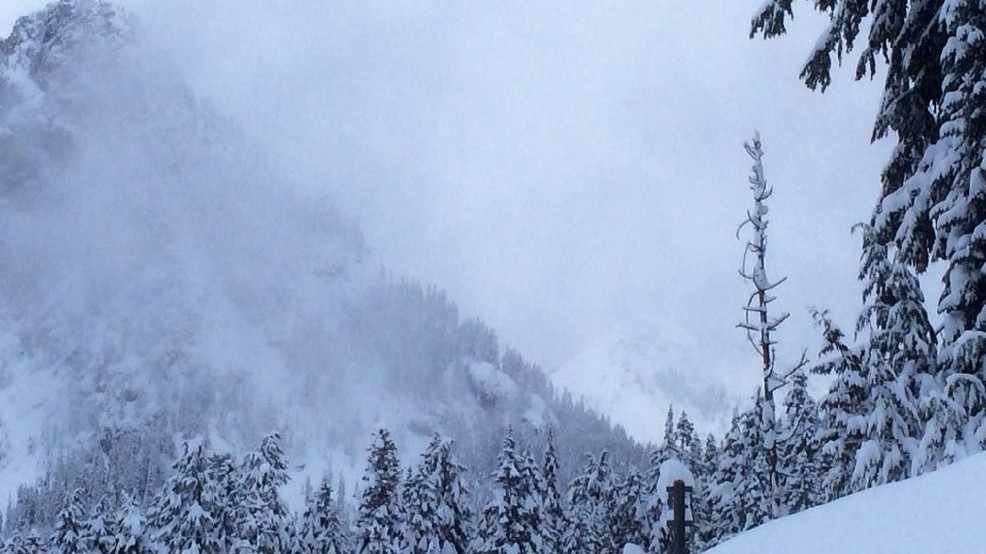 New Winter Forecast For Pacific Northwest Brings Good News For