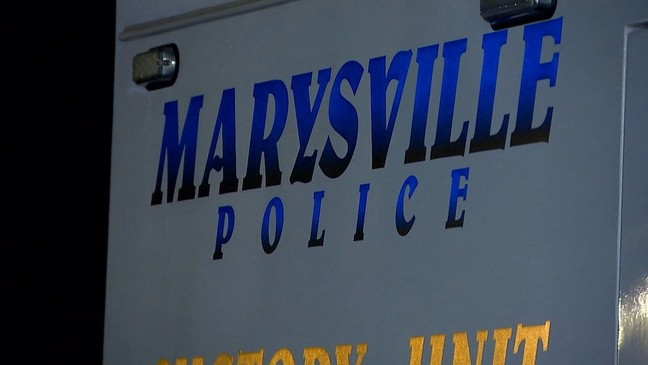 Marysville looks to equip police department with drones   KOMO